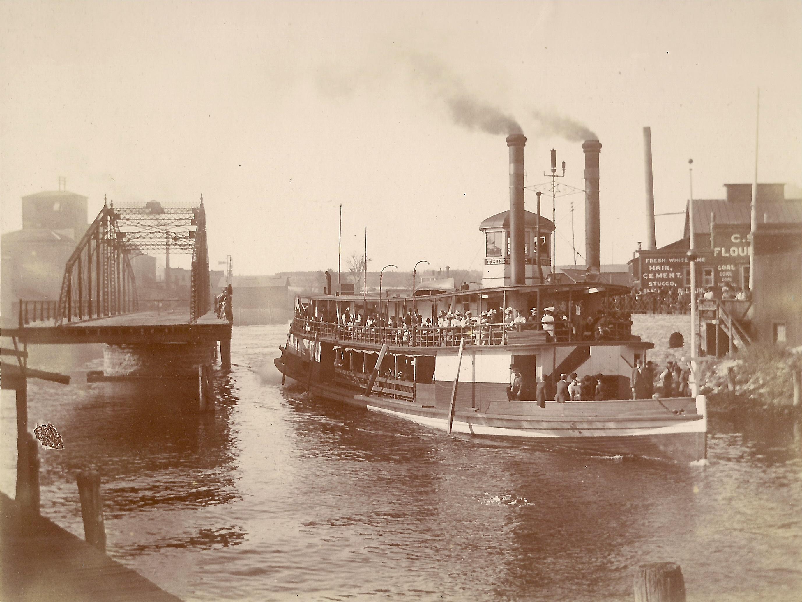 Thistle 1901